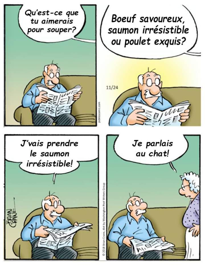 Humour en image du Forum Passion-Harley  ... - Page 2 Chat10