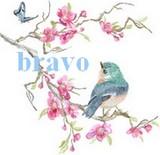 Dernier objectif Bravo_17