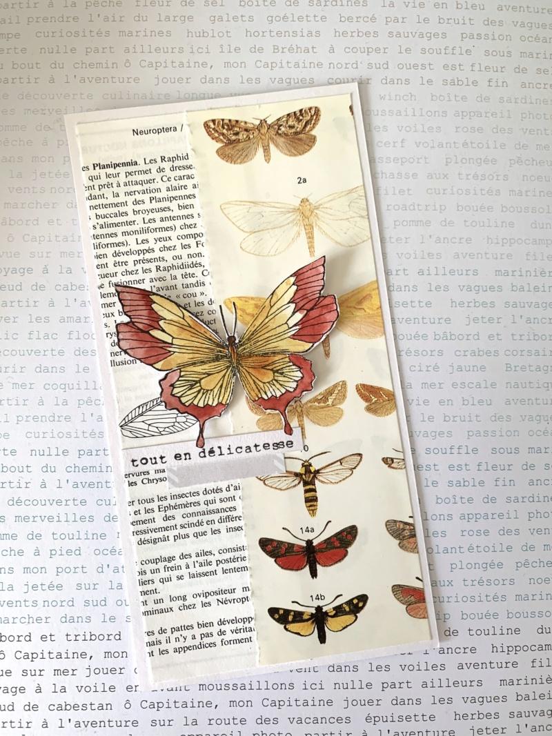 Semaine 32 - Cahier de vacances - Sciences naturelles par Sagradalicia Img_7816