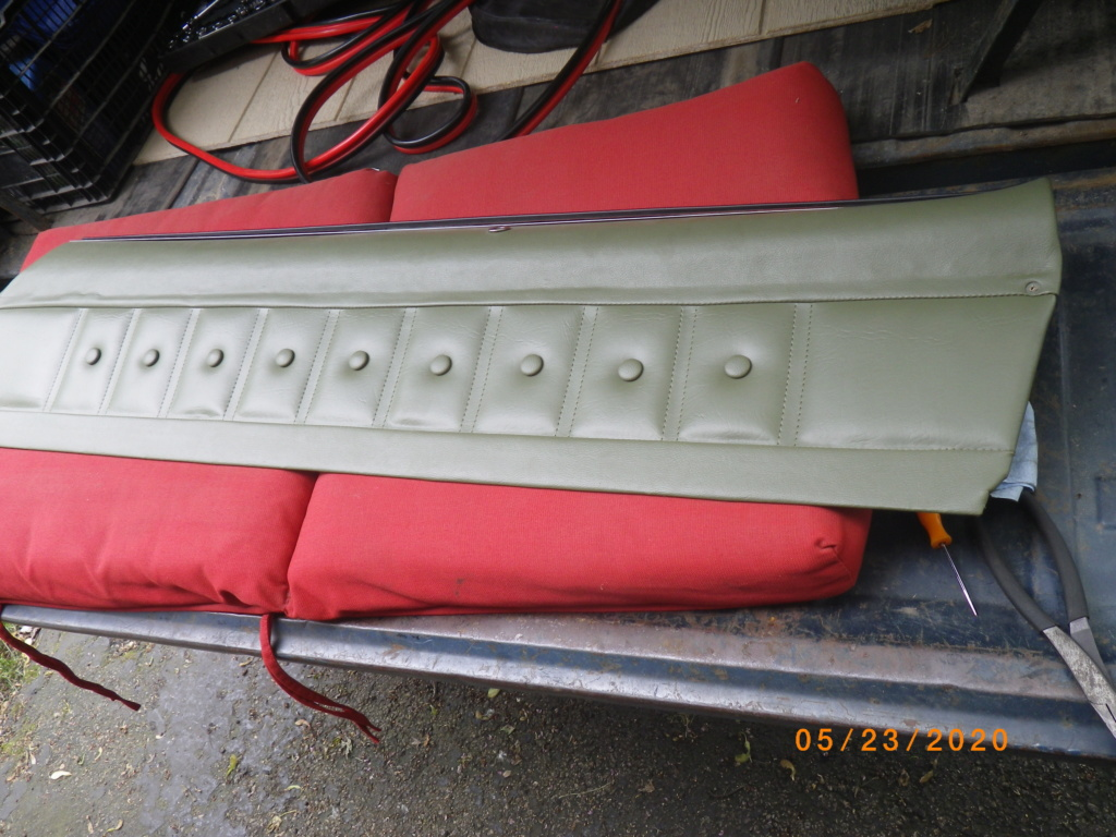 inner door panel chrome trim  Imgp5747