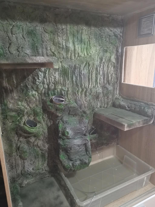 fabrication terra et dragon d'eau Img_2049