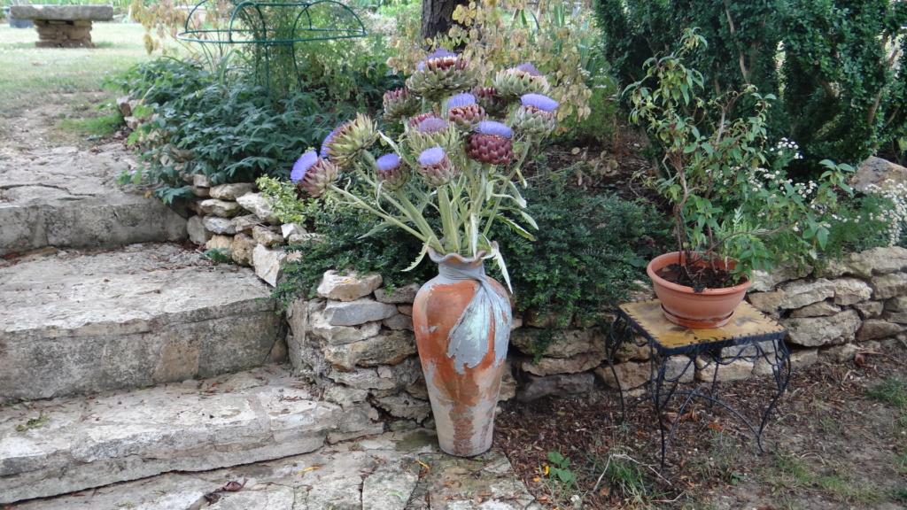 beau bouquet - Page 9 Dsc01650