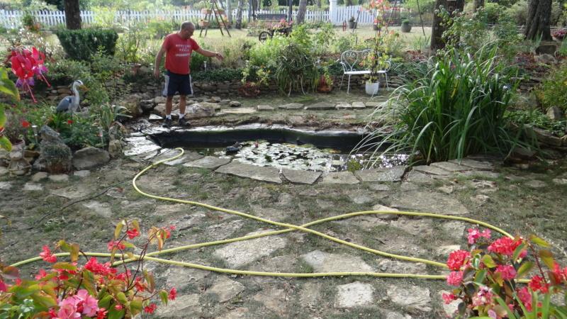 Notre petit bassin se refait une beauté Dsc02713