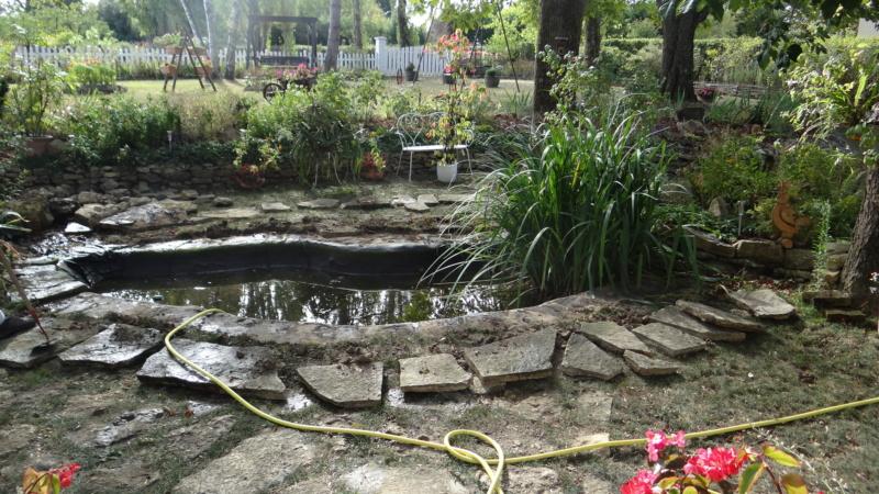 Notre petit bassin se refait une beauté Dsc02715