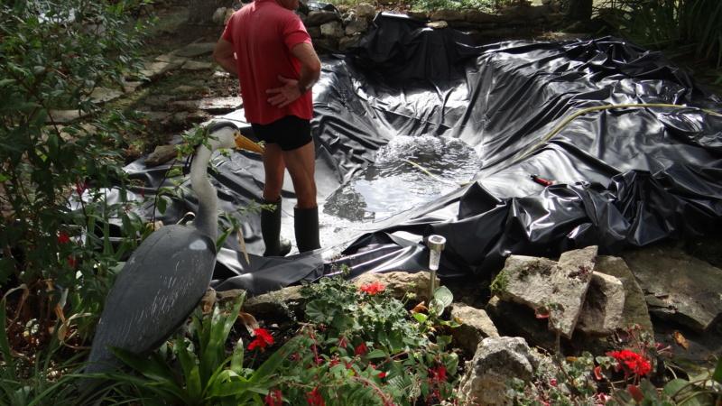 Notre petit bassin se refait une beauté Dsc02817