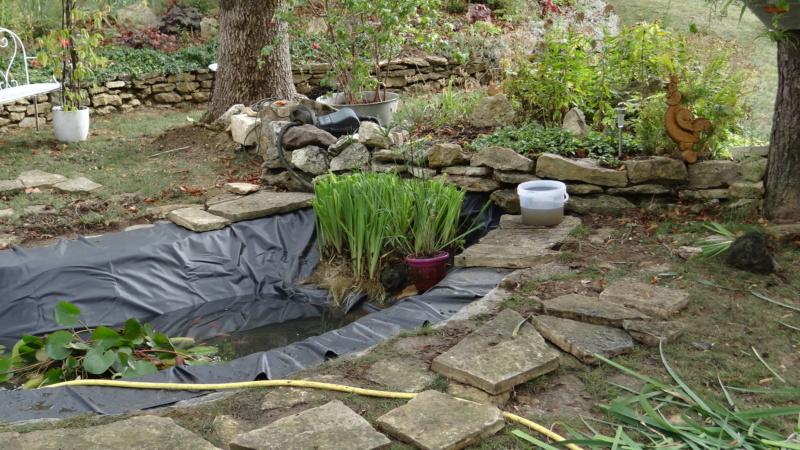 Notre petit bassin se refait une beauté Dsc02825