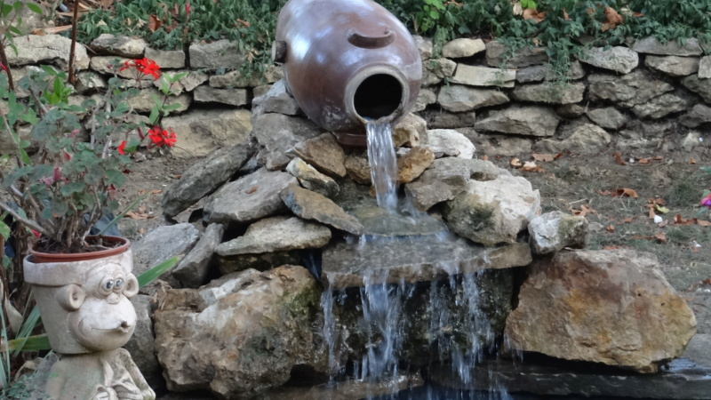 Notre petit bassin se refait une beauté - Page 3 Dsc02914