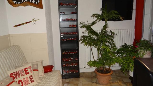 Palmier Kentia d'intérieur (Howea forsteriana) Dsc08410