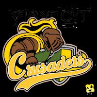 Logos de la saison 10 Kaamel10