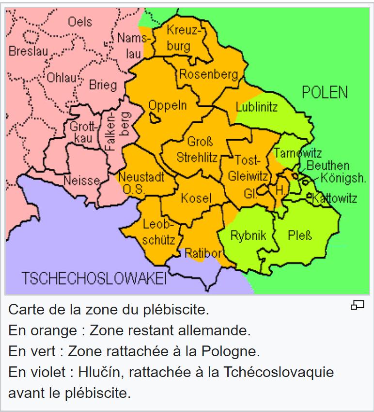 """La 46° division dite """"la division bleue"""" en Haute Silésie. 46_110"""
