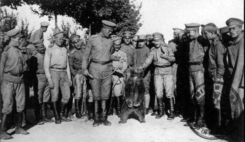 16 septembre 1917 il y a 103 ans, les mutins de La Courtine! Court114