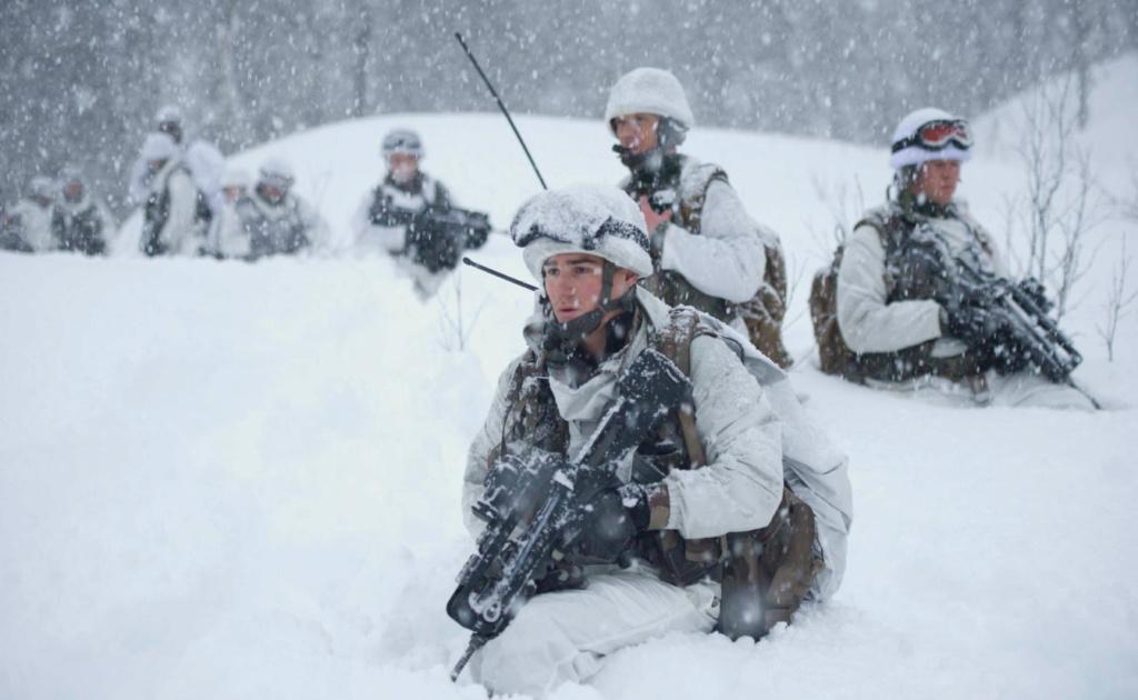 Qu'est-ce qui caractérise les troupes de montagne ? Tm910