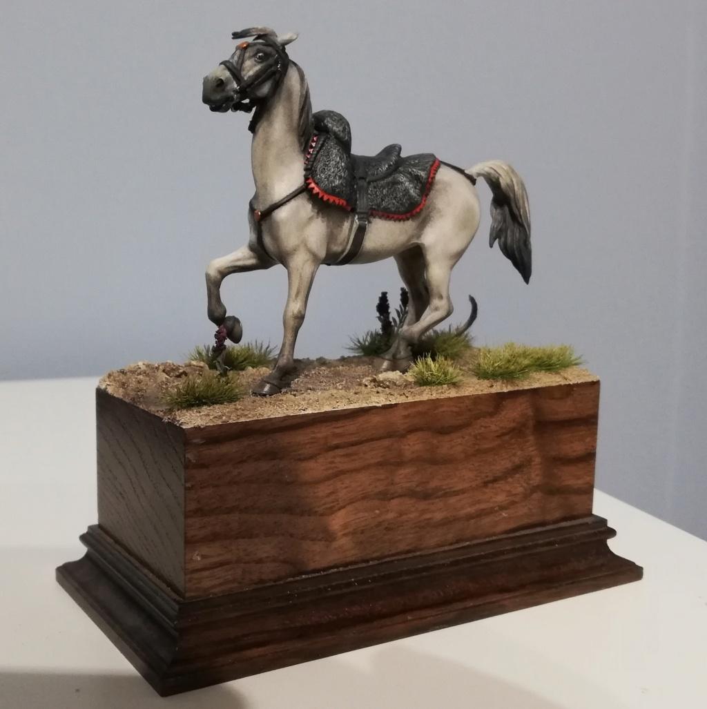 Trompette de Chasseurs à cheval - Page 2 Chasse34