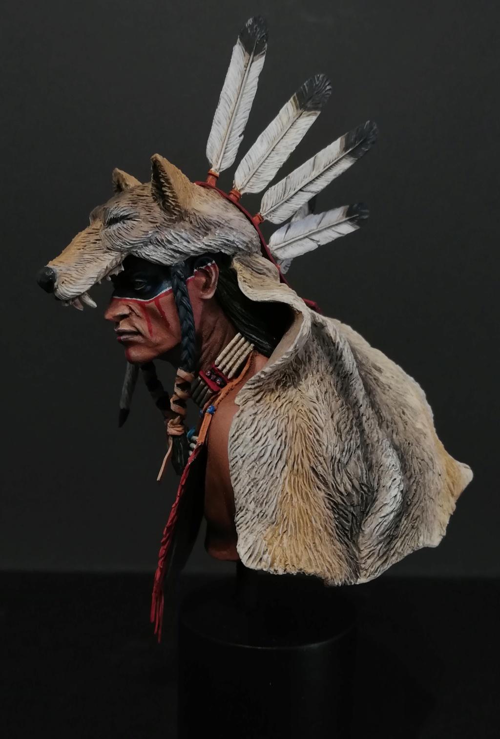 Wolf Scout Cheyenne Wolf_210