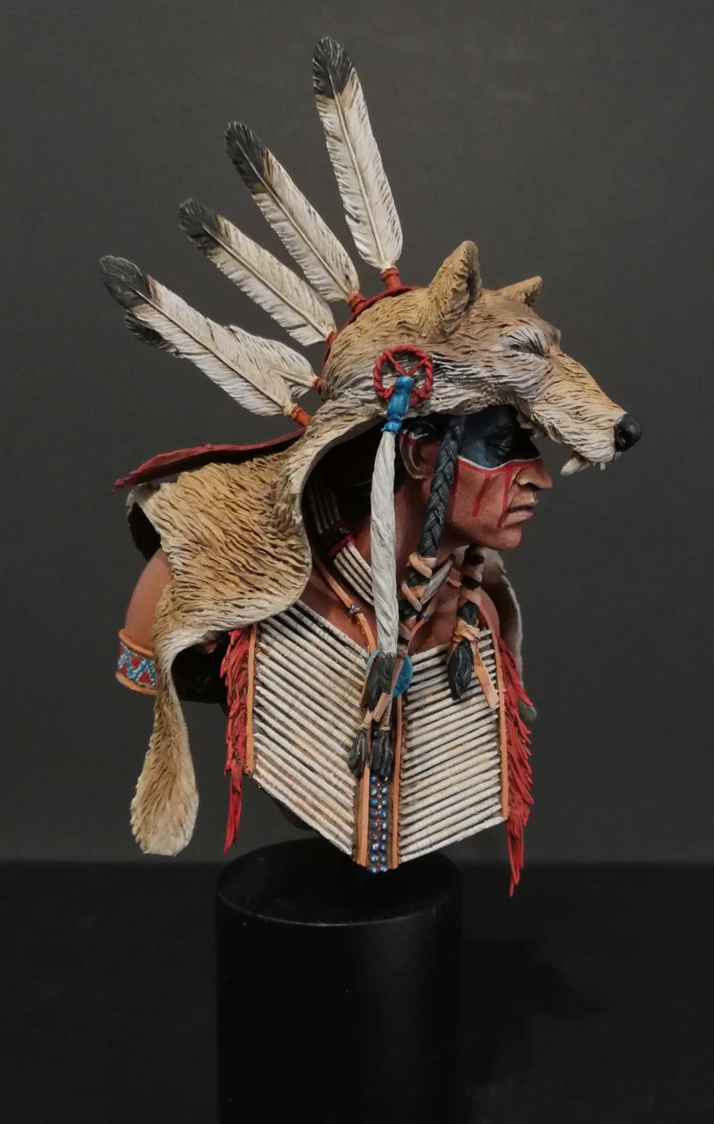 Wolf Scout Cheyenne Wolf_310