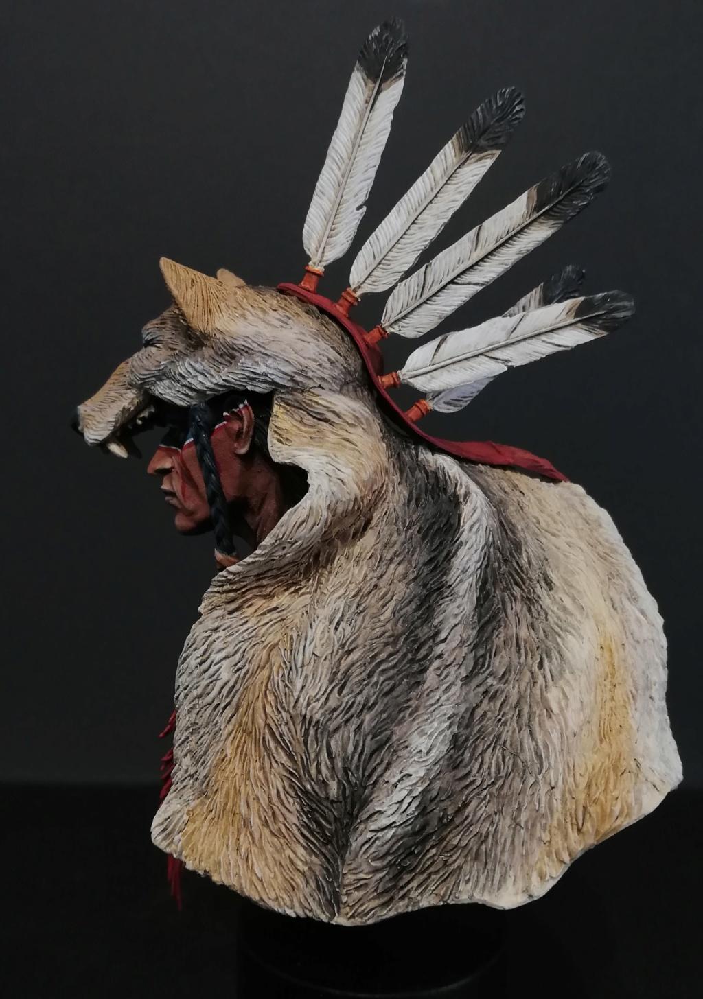Wolf Scout Cheyenne Wolf_410