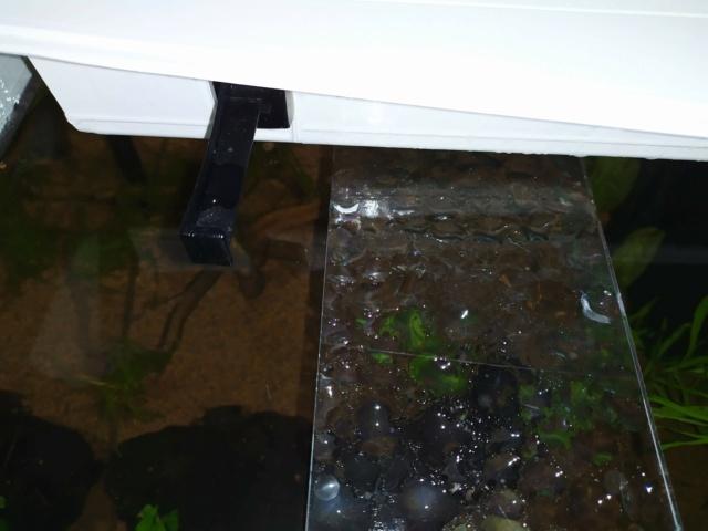 Quel système d'éclairage aquarium aquatlantis Img_2013