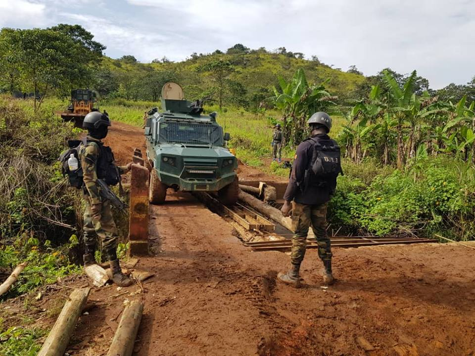 Forces Armées Camerounaises - Page 7 A2172710
