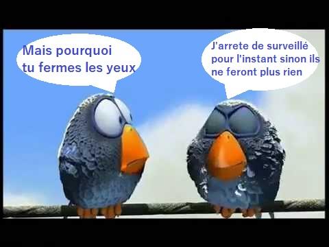 Les Charentais - Page 2 Hqdefa19