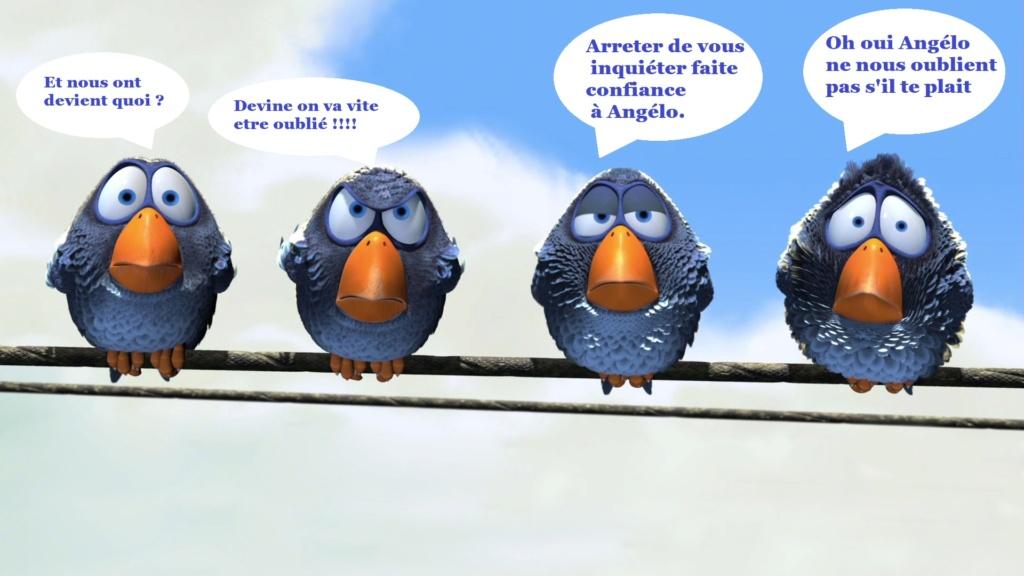 nos animaux de compagnies ! - Page 37 R14
