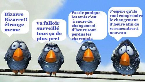 Les Charentais - Page 2 Rd96e110