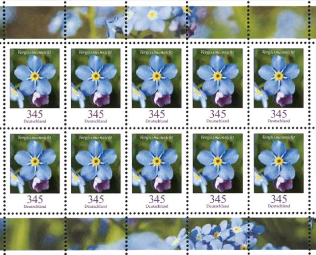 Blumengruß aus Deutschland - Seite 2 345-bo11