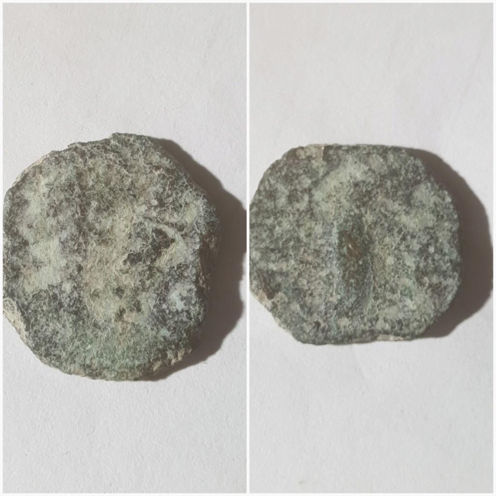 Semis de Gadir (?) Peso_210