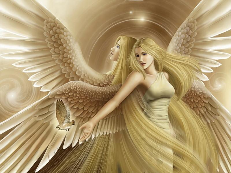 Луч Света и Гармонии 27--aa11