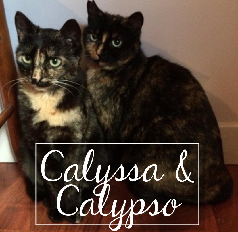 CALYSSA & CALYPSO Cc1910