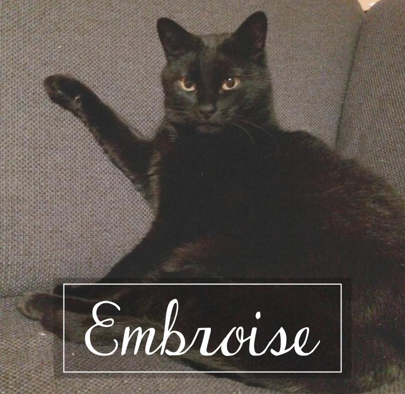 EMBROISE Embroi10