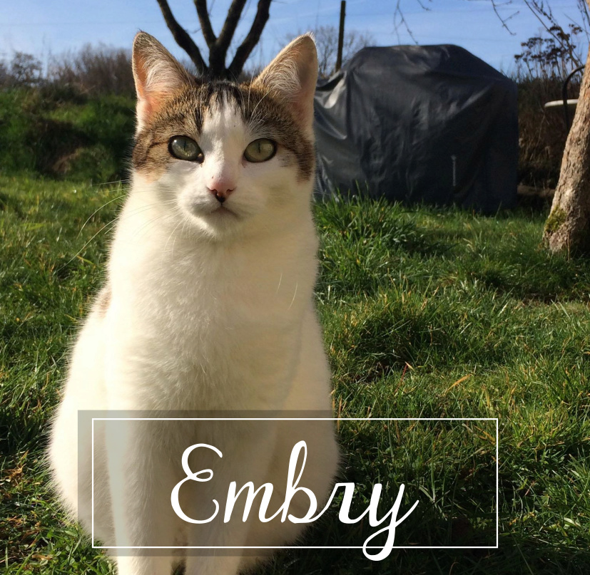 EMBRY Embry111