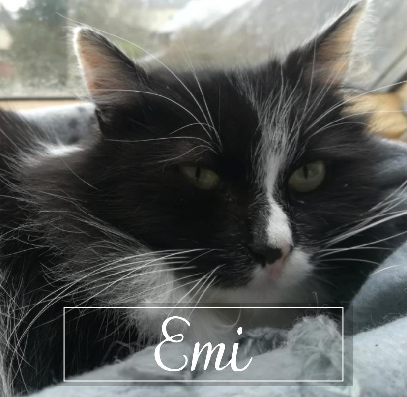 EMI Emi1913