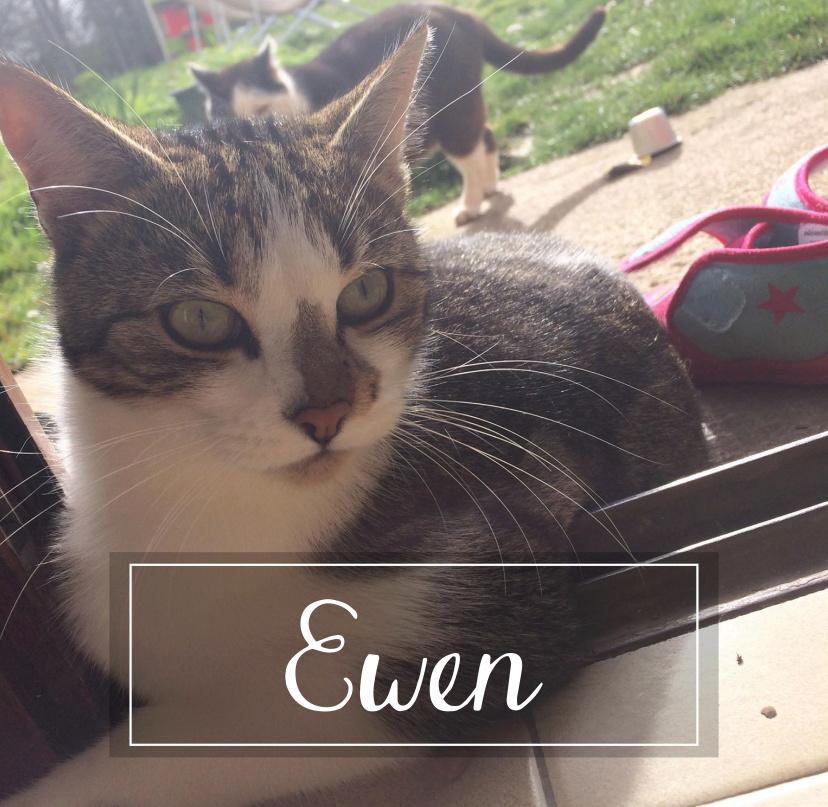 EWEN Ewen1910