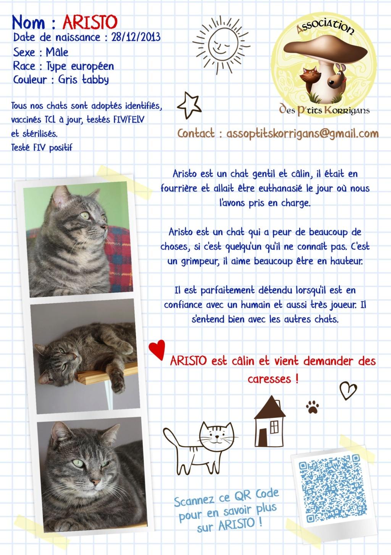 ARISTO - Page 2 Fbok_a11