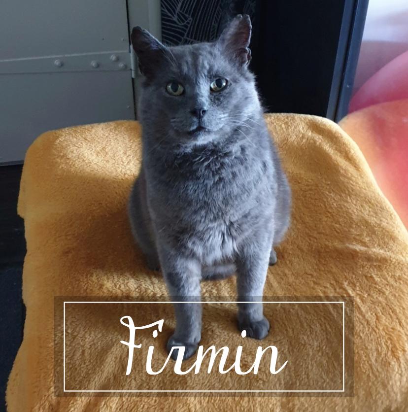 FIRMIN Firmin10