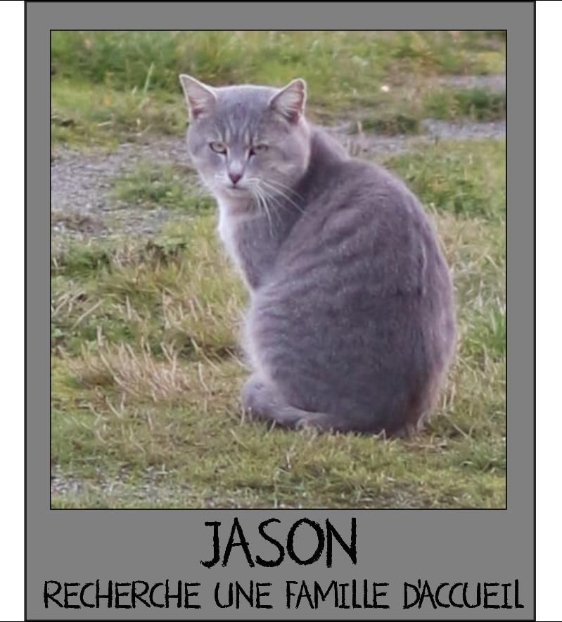 MAISON DE LA VIEILLE DAME Jason_10
