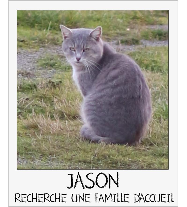 MAISON DE LA VIEILLE DAME Jason_11