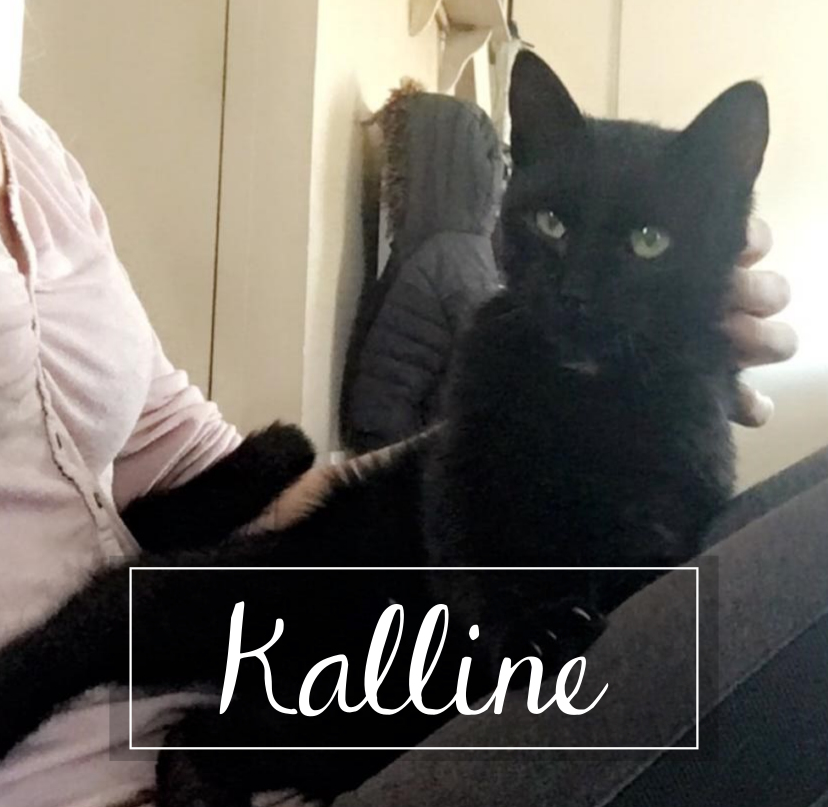 KALLINE Kallin10