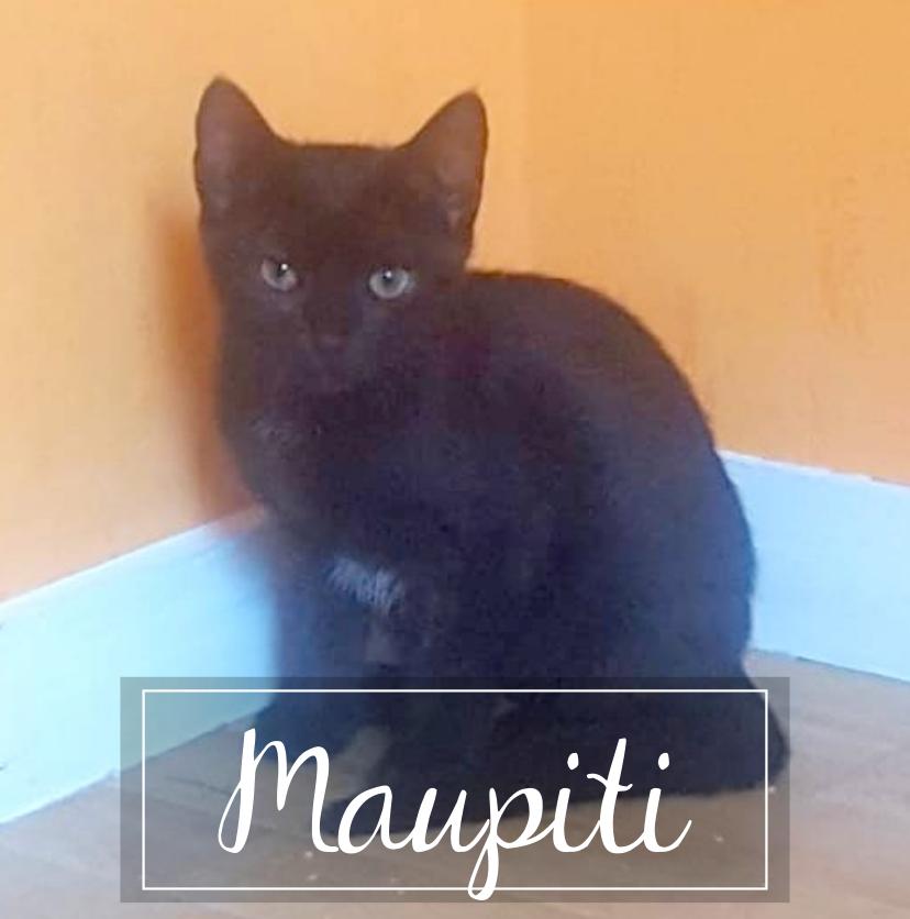 MAUPITI Maupit10