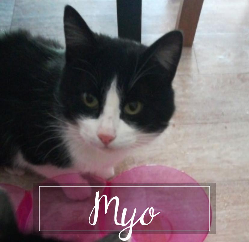 MYO Myo1913