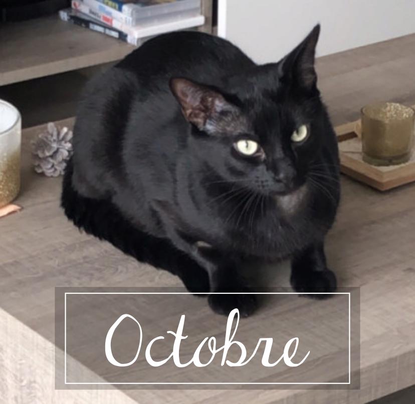 OCTOBRE Octobr10