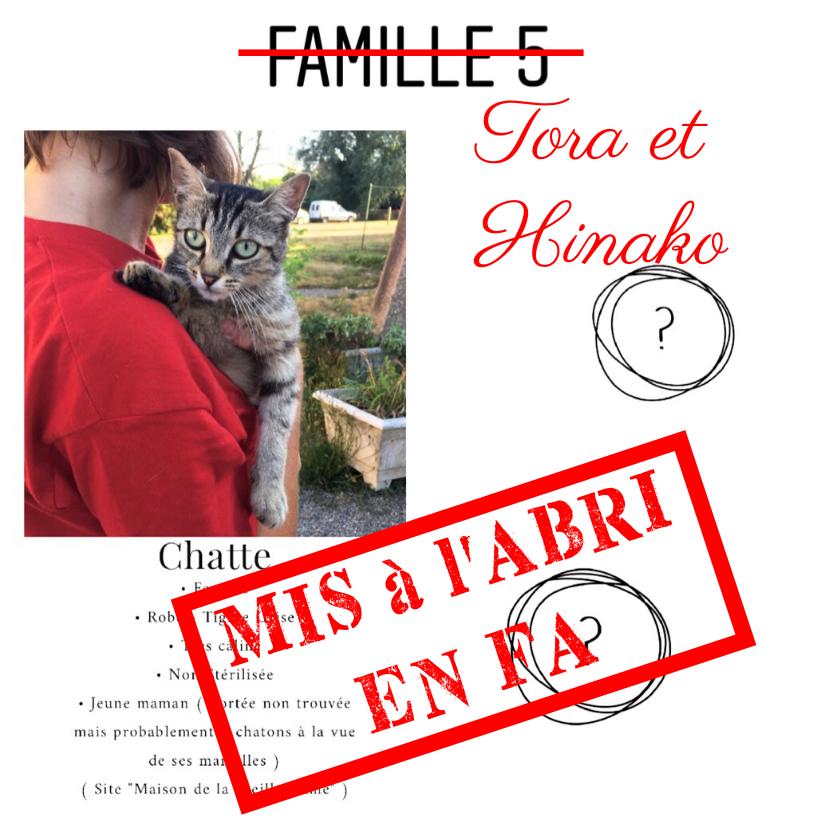 MAISON DE LA VIEILLE DAME Tora_h12