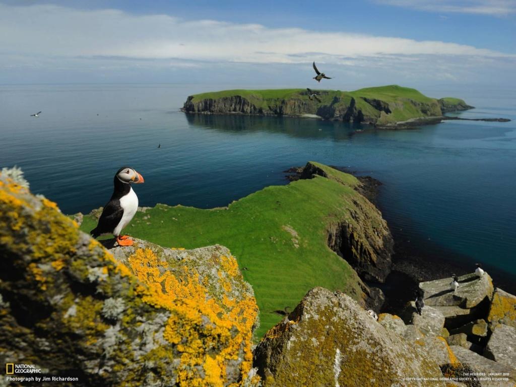 Tag nature sur Des Choses à lire Jamie_12