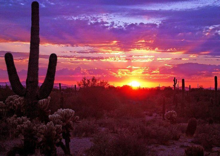 A little Arizona AU for your viewing pleasure... Sunet10