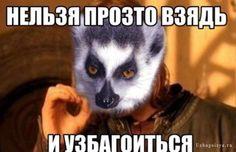Мемы от Кота Бегемота и от форумчан - Страница 2 79408f11