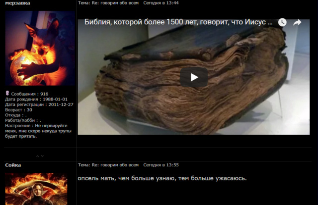 Как ведьмы-бесопоклонницы кошка и сойка нарушают законодательство РФ - Страница 2 A__a_a10