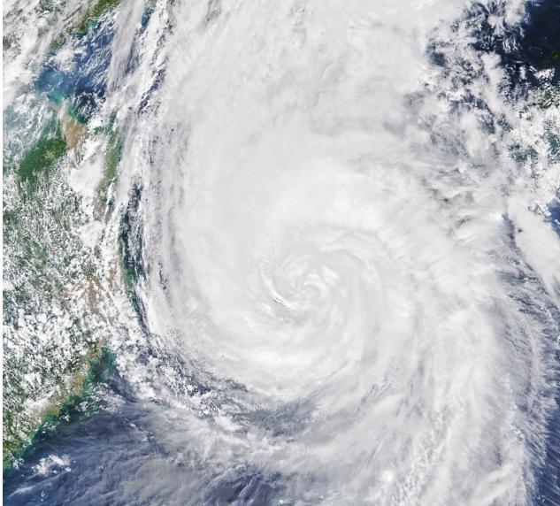В Приморском крае бушует Тайфун Scree659