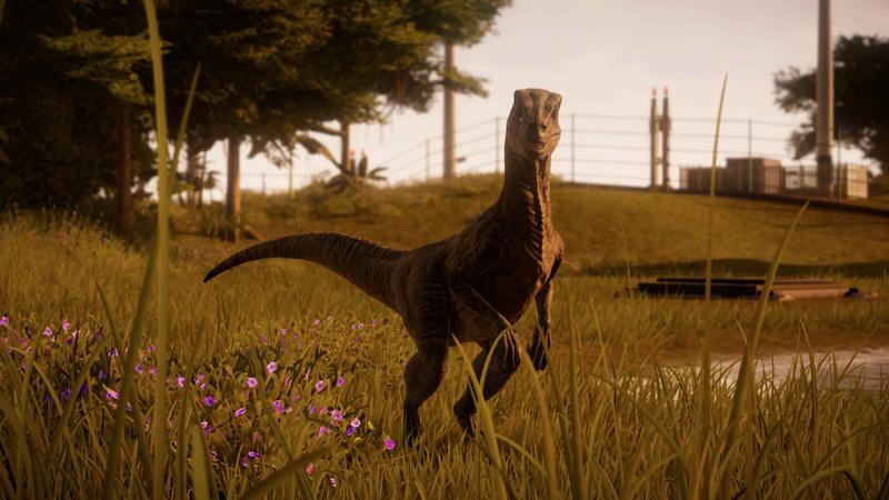 Share Your Screenshots! Raptor10