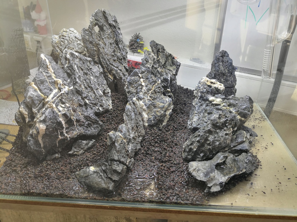 Préparation d'un mountain scape / iwagumi Img_2015