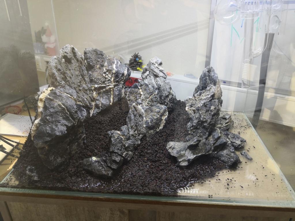 Préparation d'un mountain scape / iwagumi Img_2018